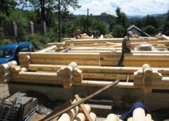 Яку деревину вибрати для будівництва дерев'яного будинку?